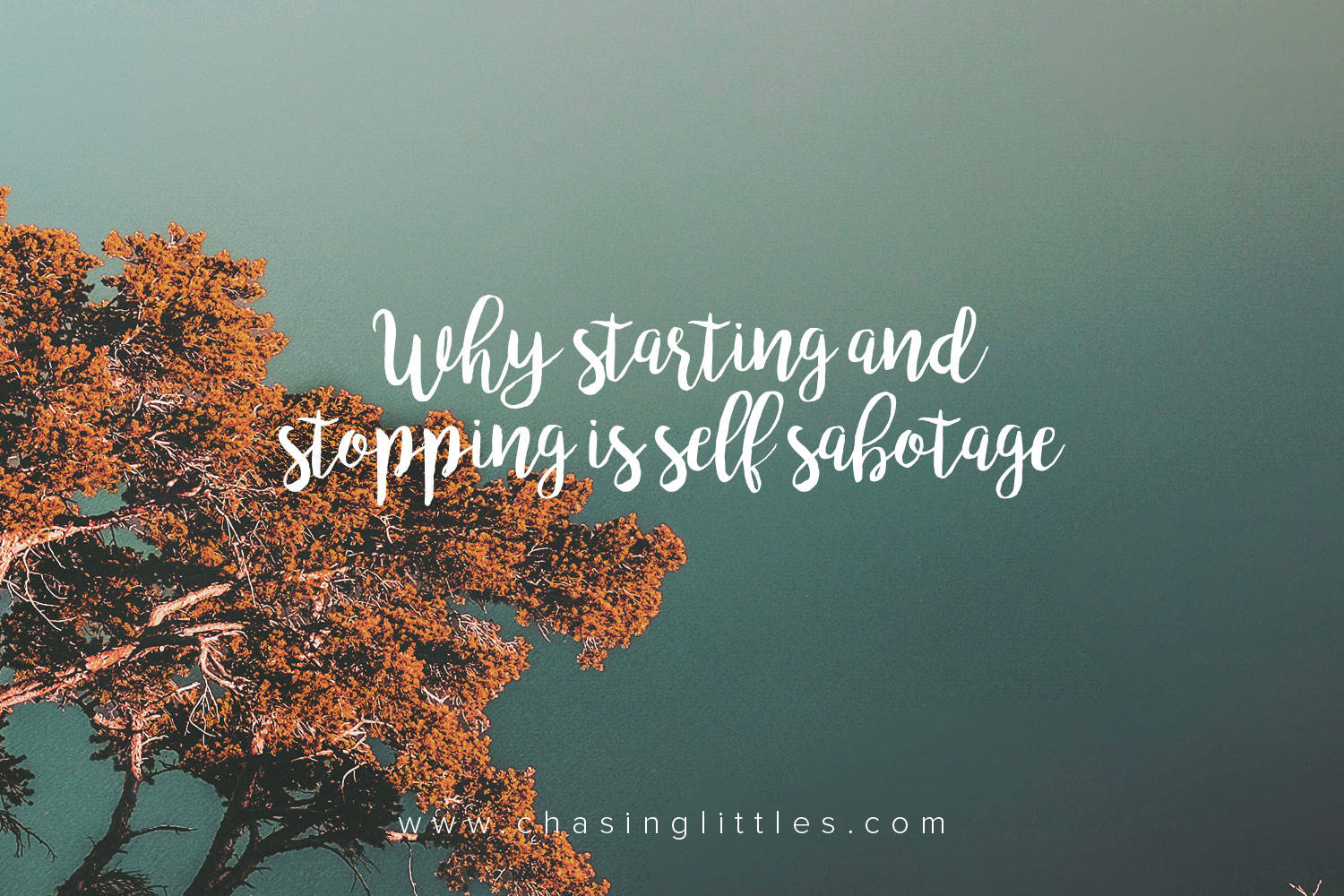 big mo why starting and stopping is self sabotage